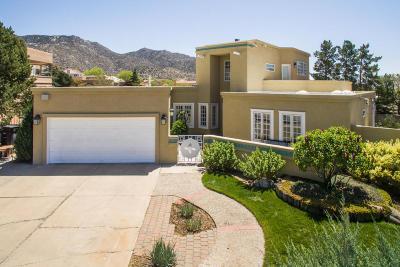 Albuquerque Single Family Home For Sale: 1400 Wells Drive NE