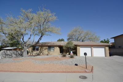Albuquerque Single Family Home For Sale: 3713 Glen Canyon Road NE