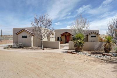 Single Family Home For Sale: 2313 Chessman Drive NE