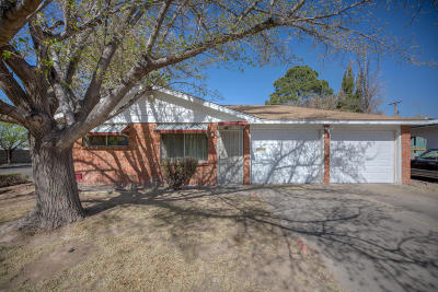 Albuquerque Single Family Home For Sale: 901 San Pablo Street NE