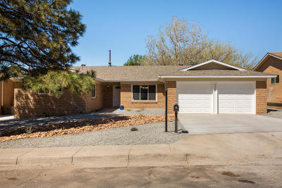 Albuquerque Single Family Home For Sale: 4905 Yucatan Drive NE