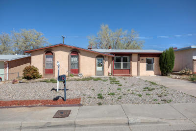 Albuquerque Single Family Home For Sale: 13105 Skyview Avenue NE