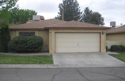 Albuquerque Single Family Home For Sale: 10700 Towne Park Drive NE