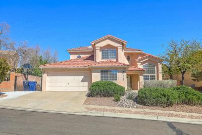 Albuquerque Single Family Home For Sale: 4445 Rancho Centro NW