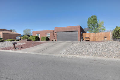 Rio Rancho Single Family Home For Sale: 207 Summer Winds Drive SE
