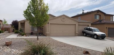 Albuquerque Single Family Home For Sale: 4304 Matchlock Court SW