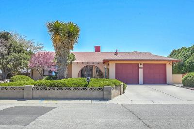 Rio Rancho Single Family Home For Sale: 208 Villa Verde Drive SE