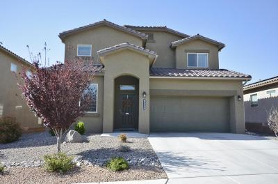 Albuquerque Single Family Home For Sale: 8500 Chilte Pine Road NW
