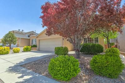 Albuquerque Single Family Home For Sale: 7116 Red Hawk Road NE