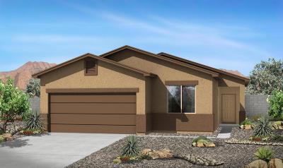 Albuquerque Single Family Home For Sale: 2419 Del Timbre Lane SW