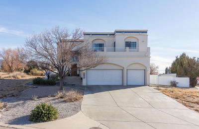 Albuquerque NM Single Family Home For Sale: $647,500