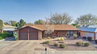 Albuquerque Single Family Home For Sale: 11908 La Charles Ave NE