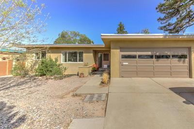 Albuquerque Single Family Home For Sale: 1205 Quincy Street NE