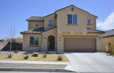 Albuquerque Single Family Home For Sale: 9536 Andesite Drive NW