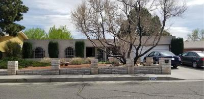 Albuquerque Single Family Home For Sale: 8524 Evangeline Avenue NE