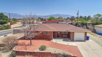 Albuquerque Single Family Home For Sale: 3136 Indiana Street NE