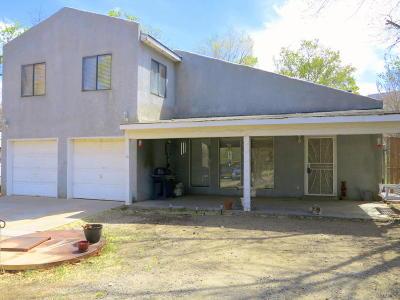 Albuquerque Single Family Home For Sale: 28 Canada De Los Alamos Trail NE