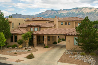 Albuquerque Single Family Home For Sale: 9400 Bear Mountain Trail NE