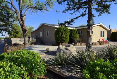 Albuquerque Single Family Home For Sale: 1003 Marcella Street NE