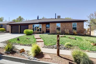 Albuquerque Single Family Home For Sale: 7428 Volunteer Street NE