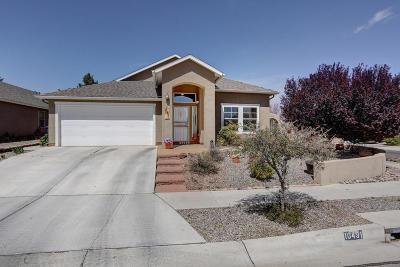 Albuquerque Single Family Home For Sale: 10491 Calle Cordoba NW