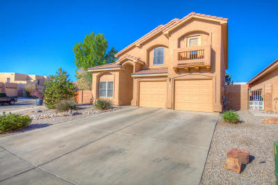 Albuquerque Single Family Home For Sale: 809 Kipuka Drive NW
