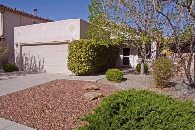 Albuquerque Single Family Home For Sale: 7515 Willow Run Drive NE