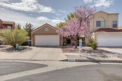 Albuquerque Single Family Home For Sale: 11428 Academy Ridge Road NE