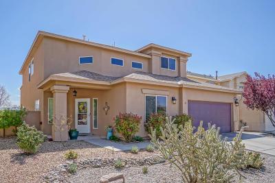 Albuquerque Single Family Home For Sale: 10516 Cadiz Street NW