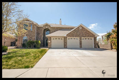Rio Rancho Single Family Home For Sale: 2832 West Island Loop SE