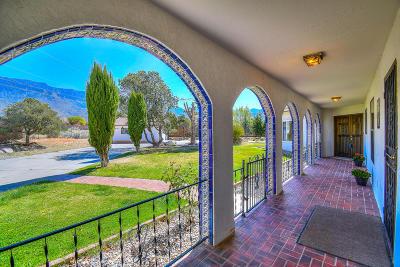 Albuquerque Single Family Home For Sale: 12409 Pino Avenue NE