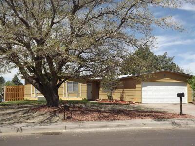Albuquerque Single Family Home For Sale: 713 Burma Drive NE