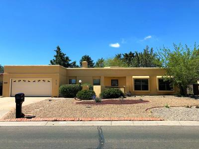 Rio Rancho Single Family Home For Sale: 2826 Trevino Drive SE