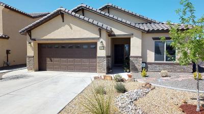 Albuquerque Single Family Home For Sale: 9535 Iron Rock Drive NW