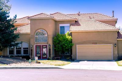 Albuquerque Single Family Home For Sale: 12040 Caribou Avenue NE