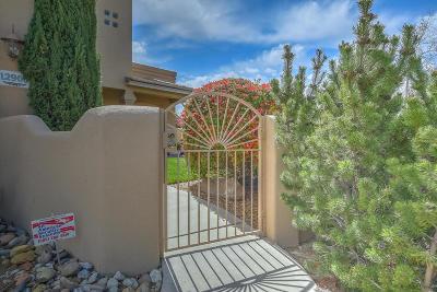 Albuquerque Single Family Home For Sale: 12900 Chitalpa Place NE