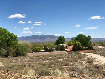 Albuquerque Residential Lots & Land For Sale: 9826 Coors Road NW
