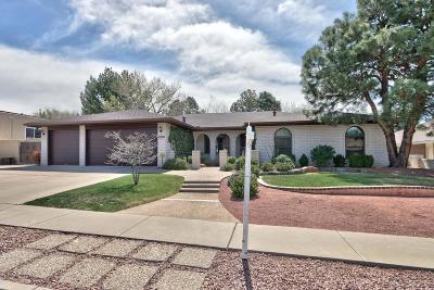 Albuquerque Single Family Home For Sale: 9200 Galaxia Way NE