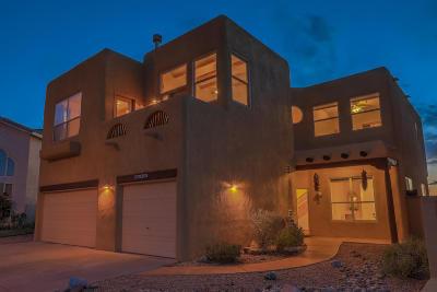Albuquerque Single Family Home For Sale: 8801 Doris Steider Street NE