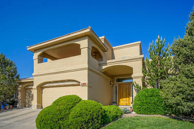 Albuquerque Single Family Home For Sale: 8415 Vina Del Sol Drive NE