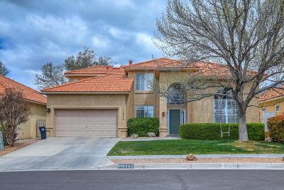 Albuquerque Single Family Home For Sale: 11925 Caribou Avenue NE