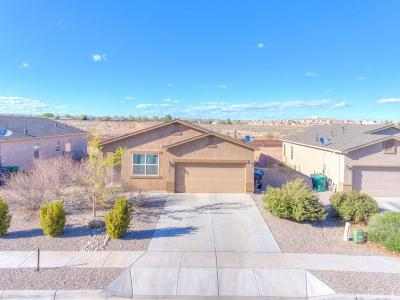 Rio Rancho Single Family Home For Sale: 1045 Northern Lights Way NE