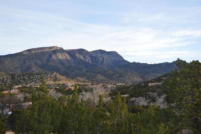 Placitas Residential Lots & Land For Sale: Lot 110 Yucca Lane