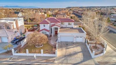 Albuquerque Single Family Home For Sale: 6148 Carousal Street NW