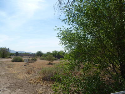Albuquerque Residential Lots & Land For Sale: Camino Espanol NW