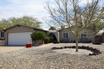 Albuquerque Single Family Home For Sale: 12916 Granite Avenue NE