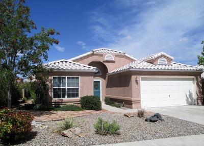 Albuquerque Single Family Home For Sale: 5509 Rabadi Castle Avenue NW