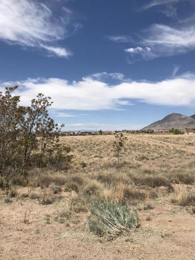 Albuquerque Residential Lots & Land For Sale: San Bernardino & Palomas Avenue NE