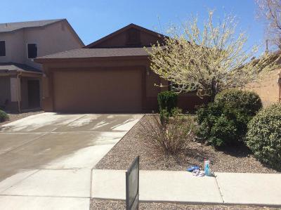 Rio Rancho Single Family Home For Sale: 904 Waterfall Drive NE