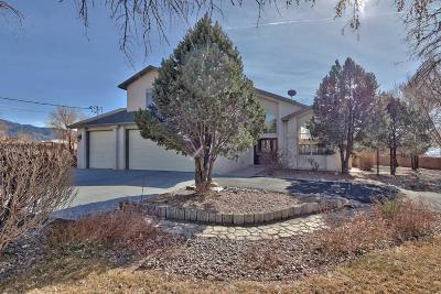 Albuquerque Single Family Home For Sale: 10410 Modesto Avenue NE